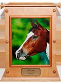 Premium 1b: Solid Beachwood Timber Photo Boxes